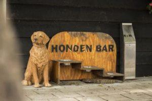 Akoestisch onderzoek Hondenpension (foto van Dier Dorado 1 van onze klanten)